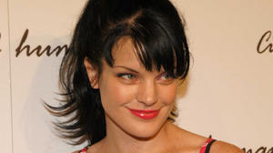 600full-pauley-perrette_0