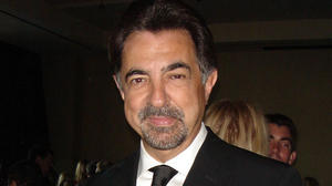 joe-mantegna_2