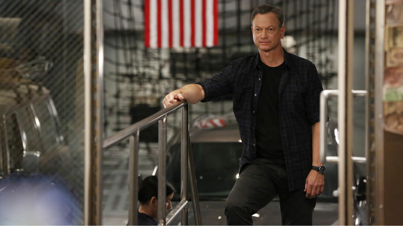 Gary Sinise: o camaleão de Hollywood